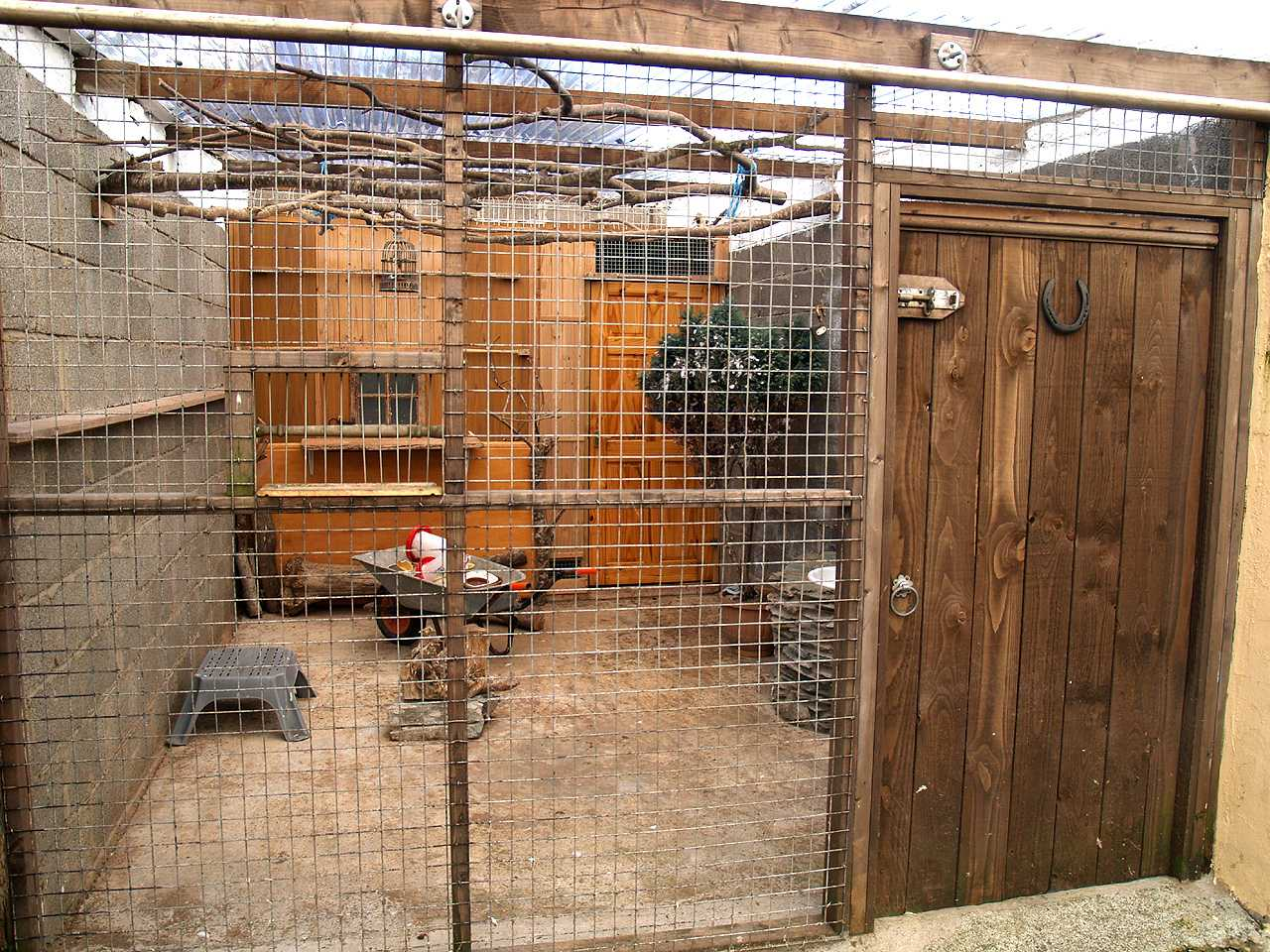 Aviary to rear of house for sale in Holyhead