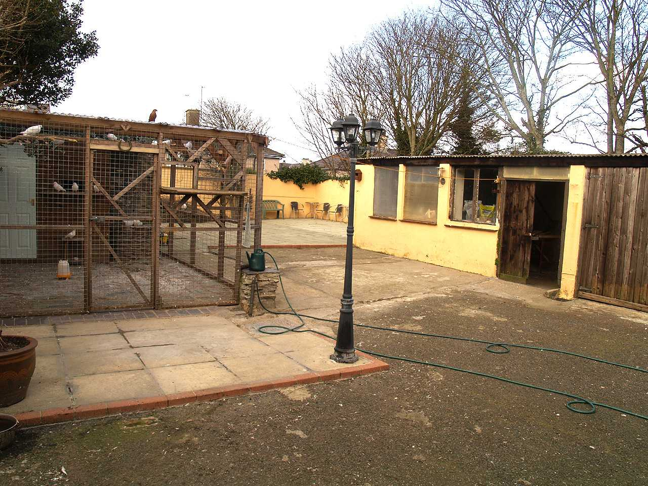 Dove Cot and very large outside area in house for sale in Holyhead