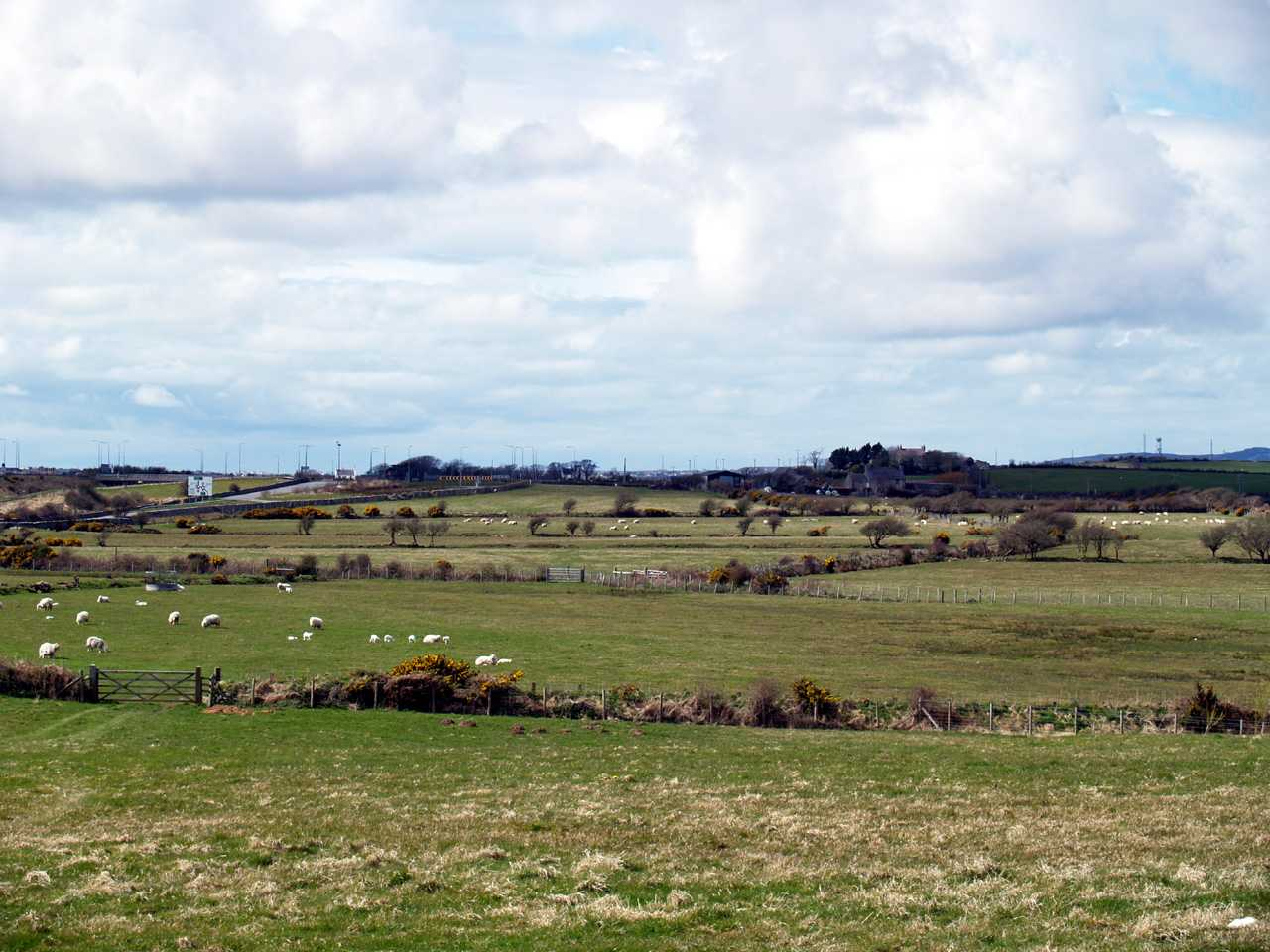 The rural view from Anglesey Go Karting / Cartio Môn
