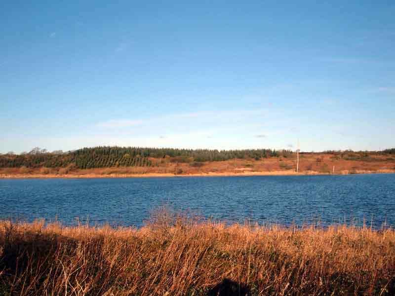 The peaceful Llyn (Lake) Cefni at Bodffordd
